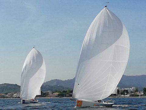 Gennaker segeln mit der J 70